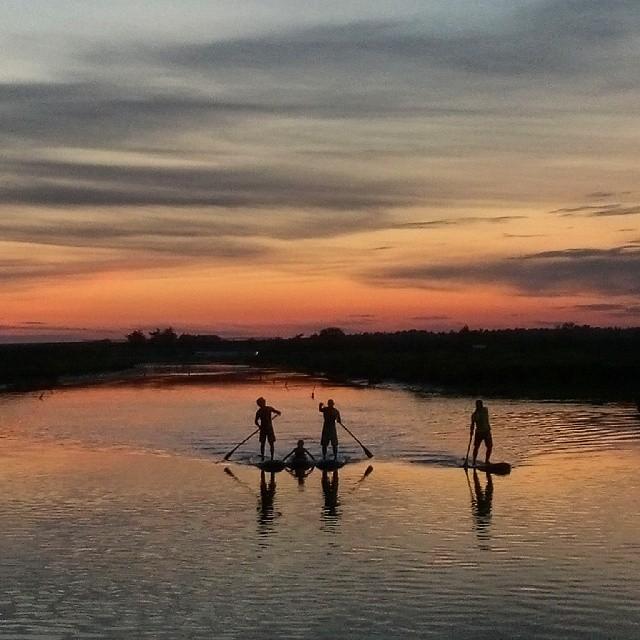 """""""La Cabane"""" à Brem sur mer, vendée, pays loier, paddle, pêche, apéro"""